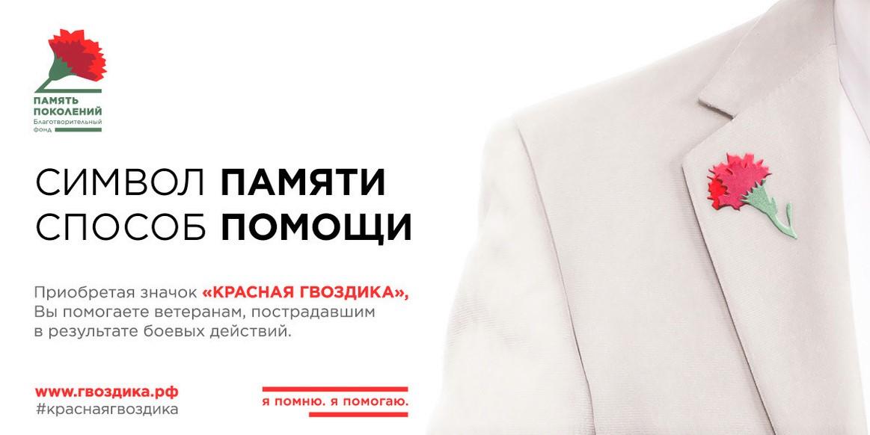 «Я помню. Я помогаю»: Краснодар присоединится к Федеральной акции «Красная гвоздика»