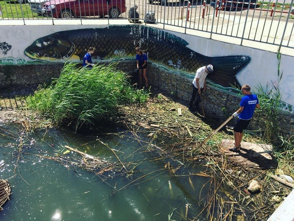 «Чистый берег»: волонтёры добровольческого отряда «Эко-дружина» провели экологическую акцию