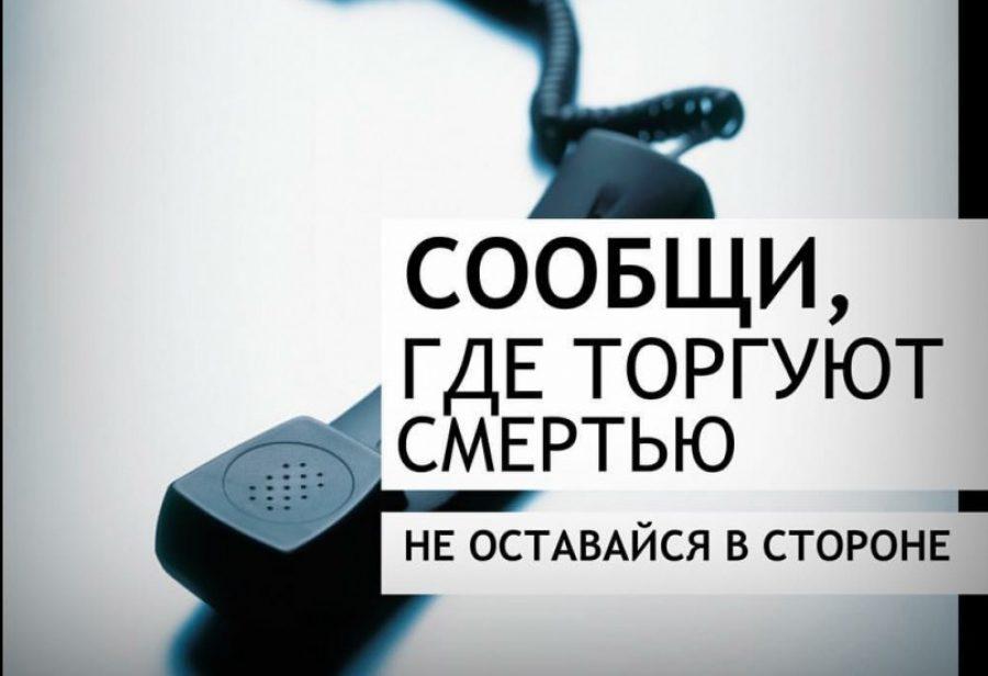 Наша безопасность в наших руках: II этап Всероссийской антинаркотической акции «Сообщи, где торгуют смертью»